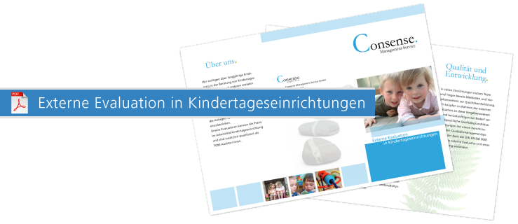 consense qualitätsmanagement_flyer externe evaluation